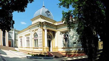 Biblioteca Municipală Ştefan Petică