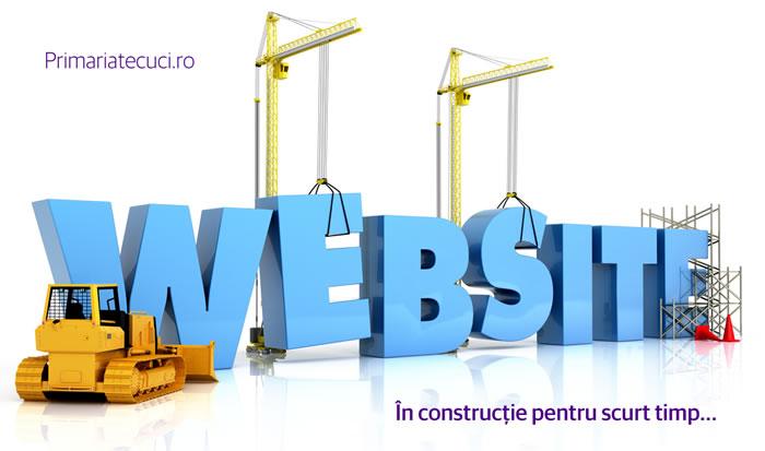 website primaria Tecuci