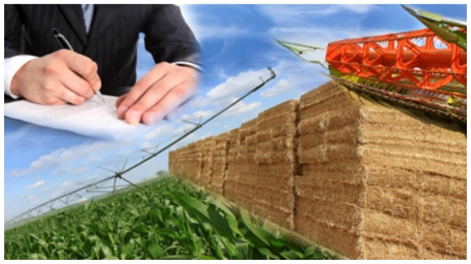 Înscriere imobil în Registrul Agricol