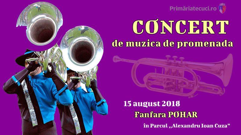 Concert de muzică de promenadă Tecuci