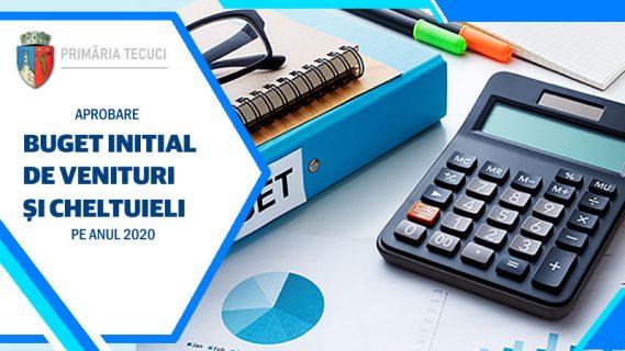 Aprobare buget inițial de venituri și cheltuieli pe anul 2020